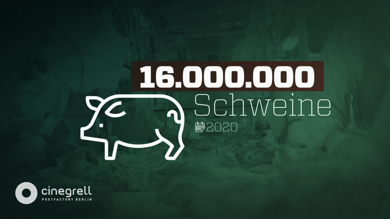 AVE Publishing | Cinegrell Postfactory GmbH: Billigfleisch um jeden Preis System Toennies