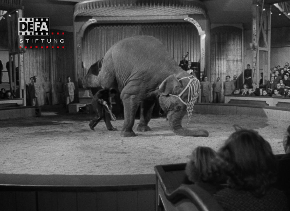 PostFactory | DEFA-Stiftung: Alarm im Zirkus