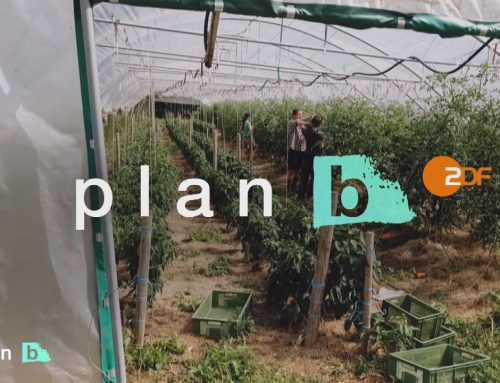 ZDF – plan b – Im Urlaub Gutes Tun